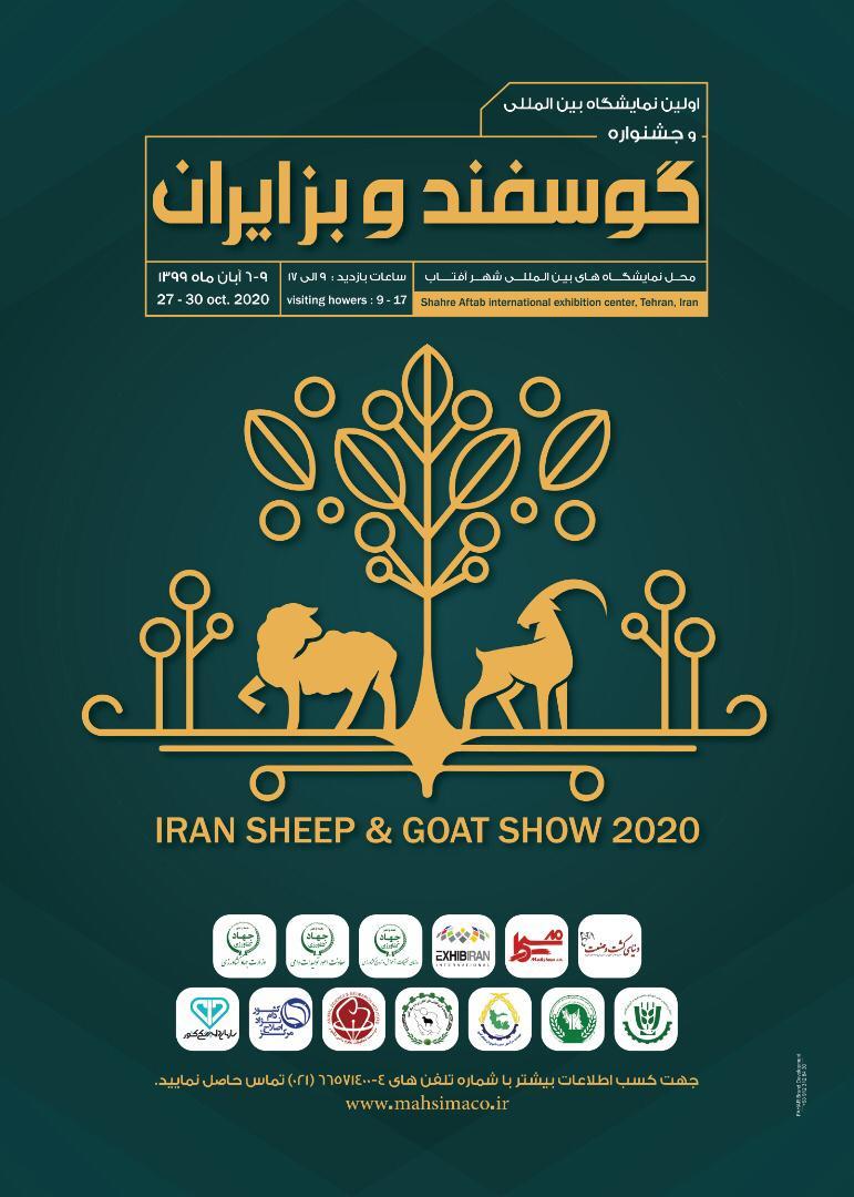 جشنواره گوسفند و بز سال 1399