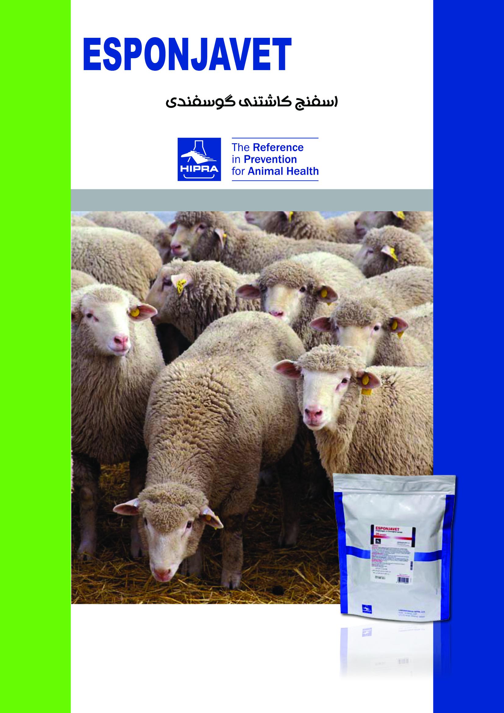 اسفنج کاشتنی گوسفندی